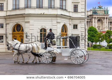 Traditional horse-driven carriage Stock photo © pixachi