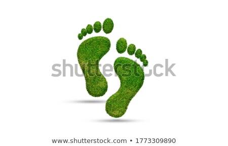 Voetafdruk menselijke voet zandstrand textuur natuur Stockfoto © marekusz