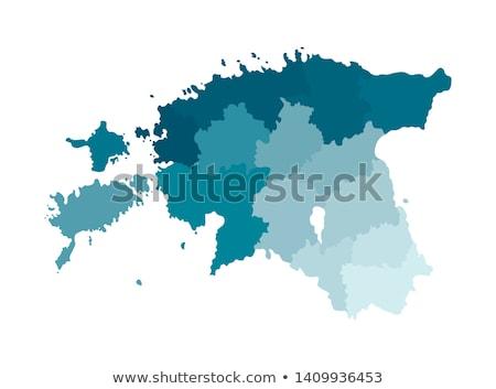 Kaart Estland gedetailleerd illustratie vlag eps10 Stockfoto © unkreatives