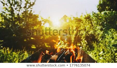 Madera barbacoa barbacoa preparación verano humo Foto stock © godfer