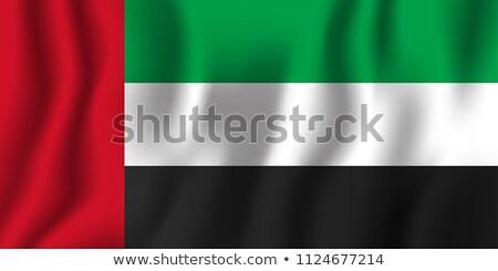 Mapa bandera botón Emiratos Árabes Unidos vector imagen Foto stock © Istanbul2009