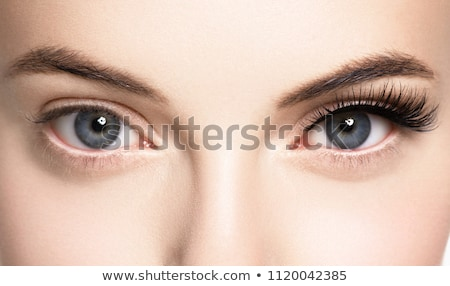 Macro of eye with fake eyelashes. Stock photo © lubavnel