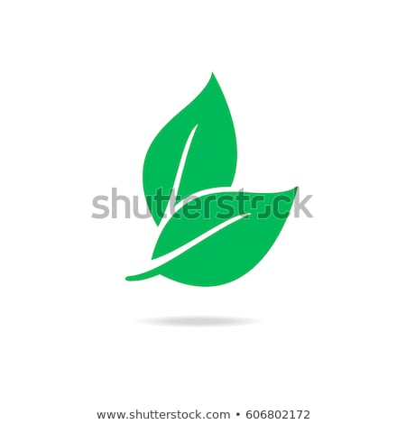 Eco Icons Silhouettes Stock photo © vectorikart