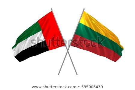 Birleşik Arap Emirlikleri Litvanya bayraklar bilmece yalıtılmış beyaz Stok fotoğraf © Istanbul2009