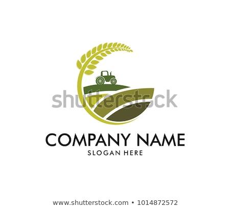 gezond · leven · logo · leuk · mensen · icon · sjabloon - stockfoto © ggs