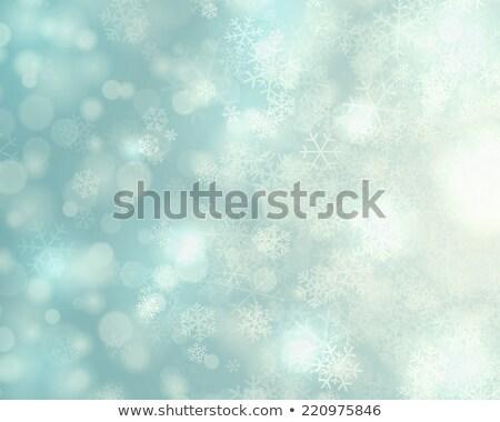 Рождества снега версия аннотация фон Сток-фото © Valeriy
