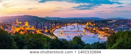 cityscape of budapest hungary at sunset stock photo © kayco