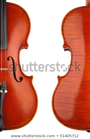 Violon blanche tête studio antique style Photo stock © rufous