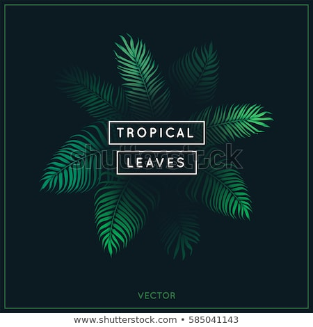 Vector background on a summer holiday theme. EPS 10 design. Stock fotó © articular