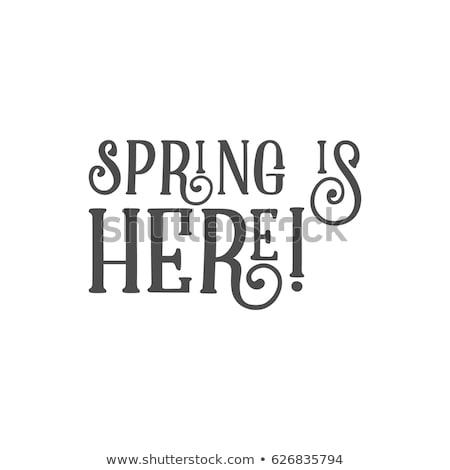 húsvét · felirat · kellemes · húsvétot · kívánság · címke · terv - stock fotó © jeksongraphics