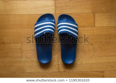 Pair of blue striped sandals Stock photo © bluering