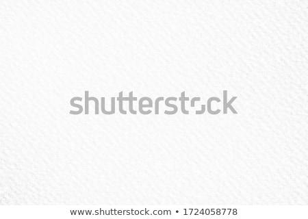 акварель текстуры мягкой вектора формат краской Сток-фото © balasoiu