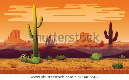 seamless desert background with cactus plants stock photo © bluering