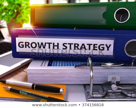 growth strategy on office binder blurred image 3d illustration stock photo © tashatuvango