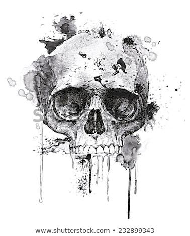 drawing skull on white paper Stock photo © romvo