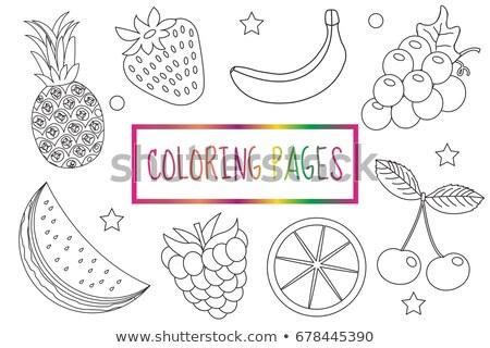 Livro para colorir página fruto conjunto esboço rabisco Foto stock © lucia_fox