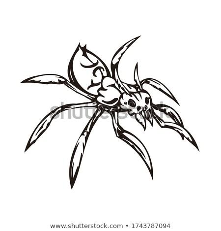 Matrica terv különböző rovarok illusztráció virágok Stock fotó © bluering