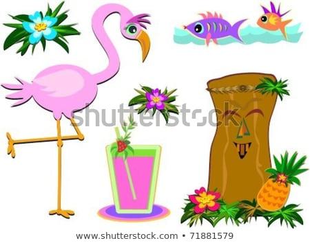Humoristique tropicales photos ici variété Photo stock © theblueplanet