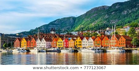 Norvégia dombok házak szökőkút város víz Stock fotó © compuinfoto