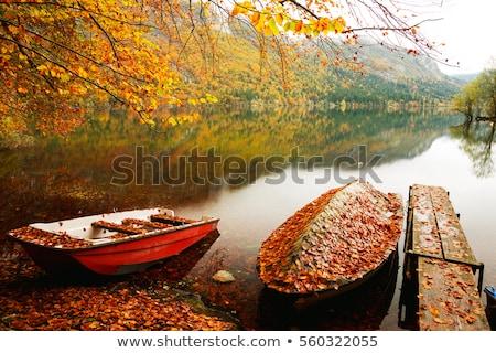 Boat sailing on lake Bohinj Stock photo © stevanovicigor