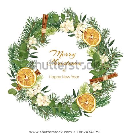 aszalt · narancs · fűszer · szeletek · fahéj · szegfűszeg - stock fotó © digifoodstock