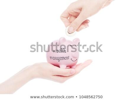 女性 手 貯金 受動 収入 文字 ストックフォト © DenisMArt