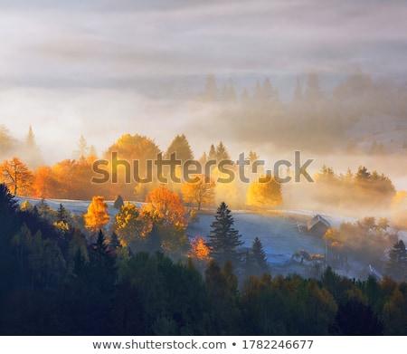 Najaar landschap mist berg dorp huizen Stockfoto © Kotenko