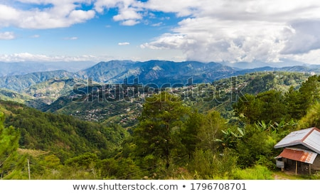 Small summer mountain village outskirts Stock photo © wildman