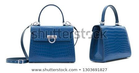 Stylish reptile leather handbag Stock photo © acidgrey