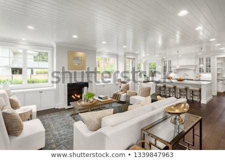 Light spacious living room with open floor plan. Stock photo © iriana88w