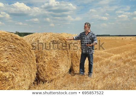 Farmer in wheat field after harvest with rolled straw in bale Stock photo © simazoran