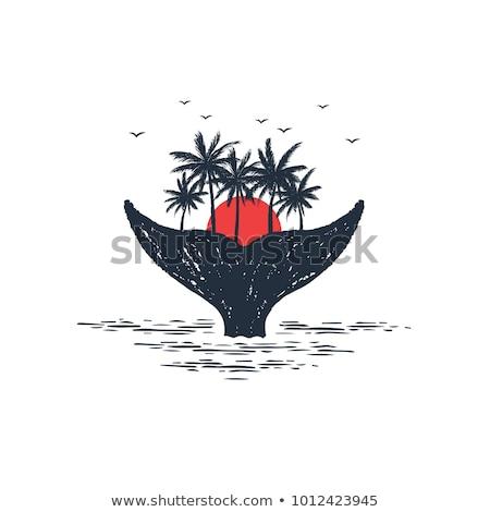 whale tail island beach logo Stock photo © blaskorizov