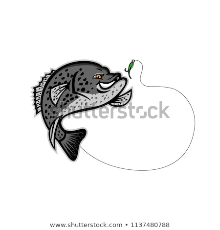 Crappie Jumping For A Bait Mascot Stock photo © patrimonio