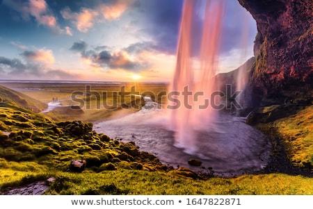 Gyönyörű vízesés Izland nyár tájkép folyó Stock fotó © Kotenko