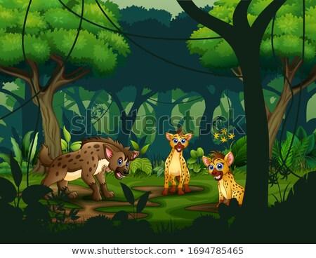 Hiena tropikalnych Rainforest ilustracja lasu charakter Zdjęcia stock © bluering