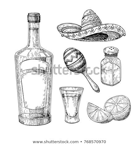 Sketch of maracas isolated on white background. Stock photo © Arkadivna