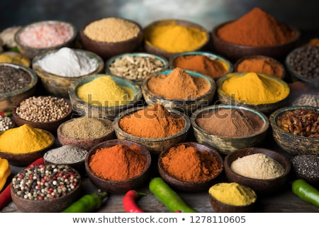 Set of various spices and herbs and cookbook Stock photo © karandaev