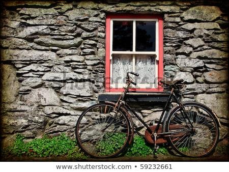 Kertész öreg bicikli pop art retro klasszikus Stock fotó © studiostoks