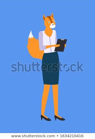 女性 キツネ リス 頭 尾 孤立した ストックフォト © robuart
