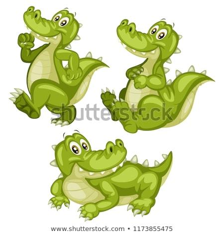 аллигатор изолированный белый иллюстрация дизайна Сток-фото © bluering