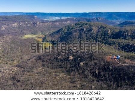 Tájkép bokor kék hegyek Ausztrália elpusztított Stock fotó © lovleah