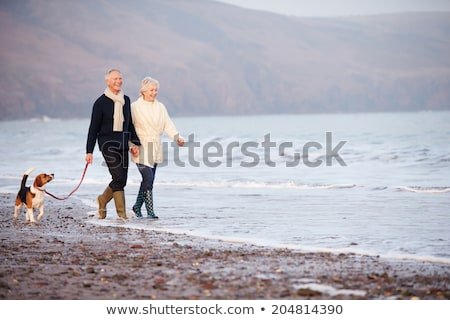 couple with beagle dog walking along autumn beach Stock photo © dolgachov
