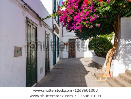 typical houses on the island of lanzarote stock photo © macsim