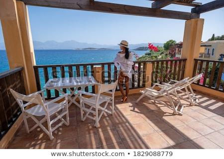 Beyaz balkon bakıyor güzel mavi okyanus Stok fotoğraf © jarenwicklund