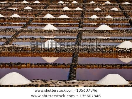 Taze deniz tuzu deniz seyahat sanayi çiftlik Stok fotoğraf © chris2766