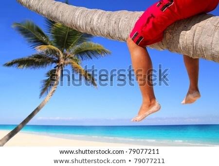 Caraibi palma spiaggia turistica gambe seduta Foto d'archivio © lunamarina