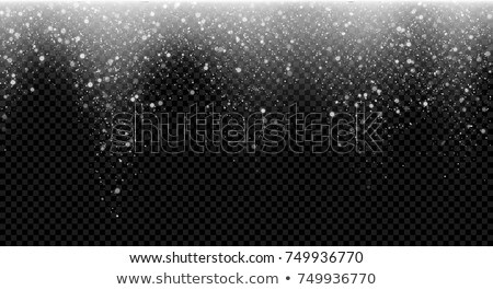 Vector christmas lights isolated on transparent background. Xmas glowing garland Stock photo © Iaroslava