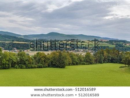 Austria krajobraz Hill drzewo charakter górskich Zdjęcia stock © borisb17