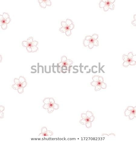 Vintage pommier fleurs fleurir floral fleur Photo stock © Anneleven