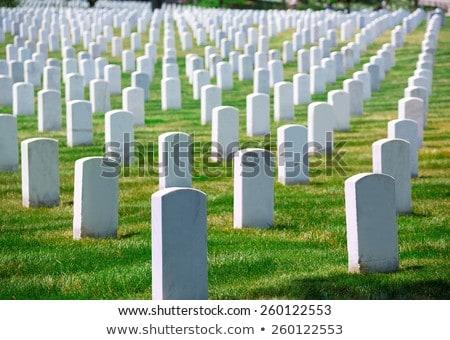 Cemitério Washington DC Virgínia Estados Unidos grama verde Foto stock © lunamarina